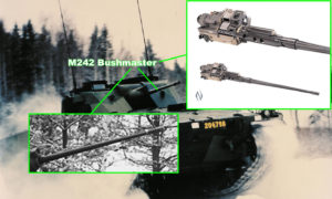 Strf 9040 Prototype ID Number 204798 with 25mm cannon